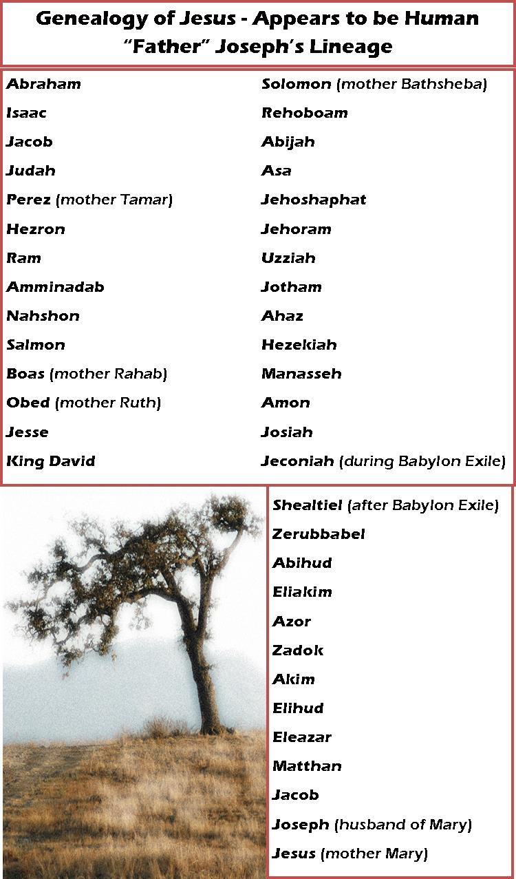 Genealogy of Jesus Through Joseph